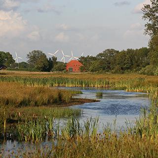 Subsidie beschikbaar voor agrariërs in het waterschapsgebied Noorderzijlvest in Groningen!